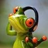 la grenouille2